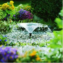 Как организовать красивый фонтан на даче?